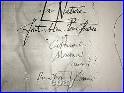 CURIOSA Nature Choses PIERRE YVES TREMOIS Affiche Lithographie Signée 1972