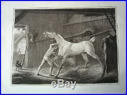 Carle VERNET (1758-1836) IMMENSE GRAVURE CHEVAL JOCKEY ÉCURIE HIPPISME 1810