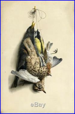 Edouard Traviès Chasse Oiseau gibier Nature morte Lithographie XIXe