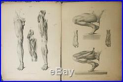Gravure atlas anatomie docteur Fau crane ecorché squelette vanité memento mori