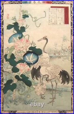 KONO BAIREI. Hérons (1883). Estampe Japon. TBE