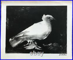 Pablo Picasso Lithographie Originale La Colombe Mourlot Original Lithograph