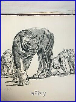 Paul Jouve Lithographie Lionne et ces Lionceaux Annotée épreuve d'essai